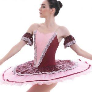 Burgundy Ballet Tutu