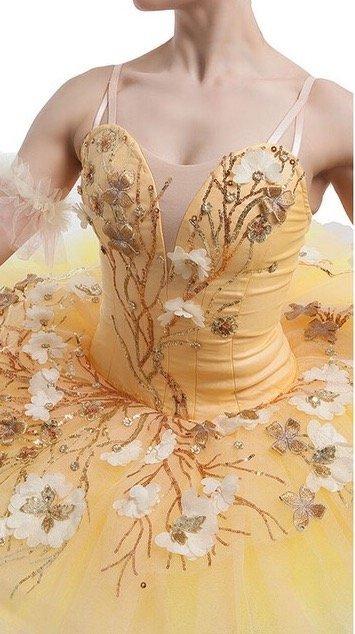 Nigella Ballet Tutu